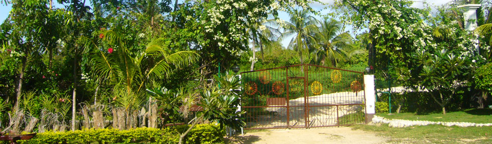 Resort immerse in nature in Bohol